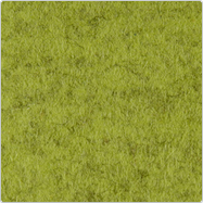 kiwi 713